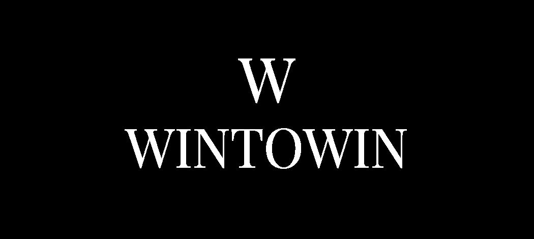 WINTOWIN